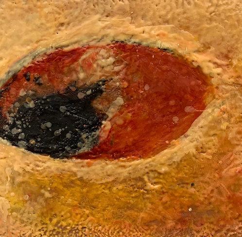 Ocular 2