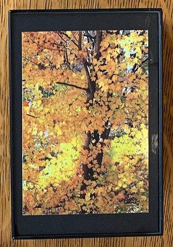 Autumn Small Framed Photo