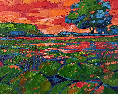 Dawn on the Pond (LEVITY)