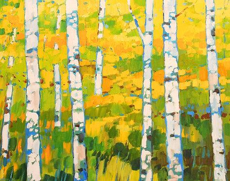 Mellow Yellow Birches