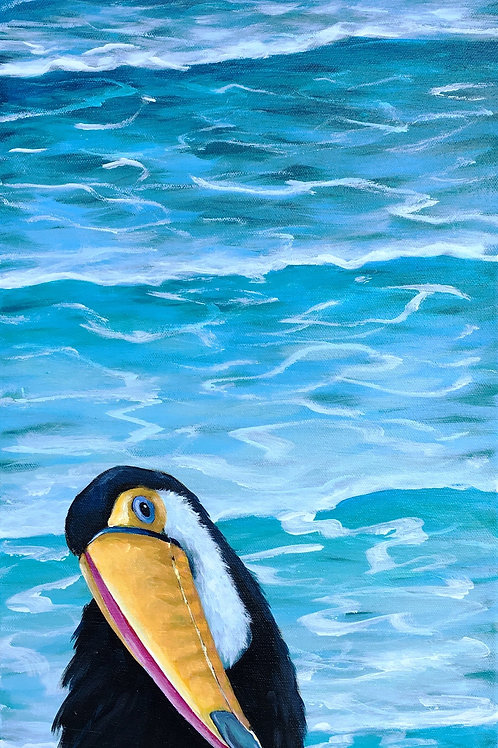 Toucan By The Sea
