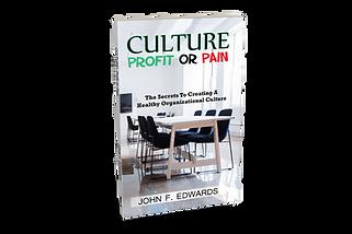 CultureV5Mock.png