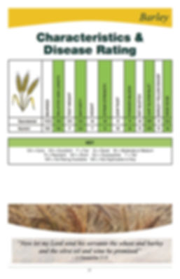 Barley-Charcteristics.jpg