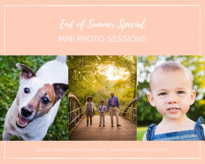 End of Summer Mini Photo Session Special!