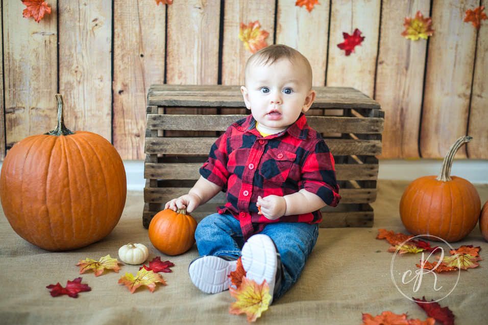 Baby Photos near Frederick, MD