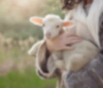 Christ Holding a lamb..jpg