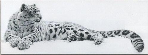 Canvastaulu 50x150cm. King of the Snow.