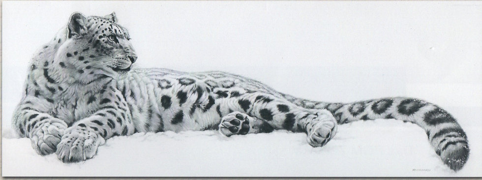 Canvastaulu 50x150cm. King of the Snow.