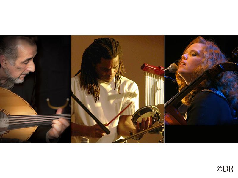 Media Luna Trio