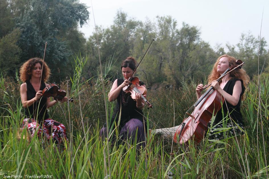 Trio Zéphyr