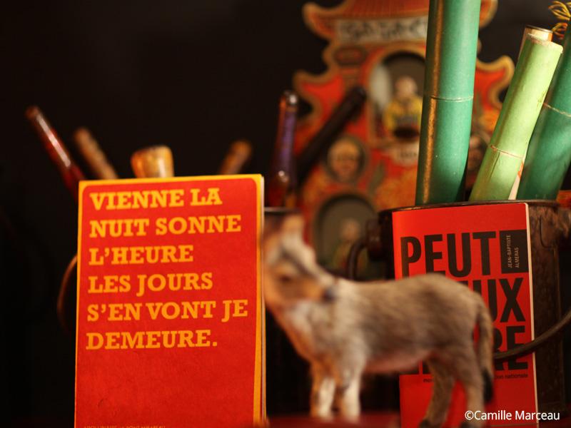 Librairie du festival