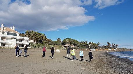 beach clean 3.jpg