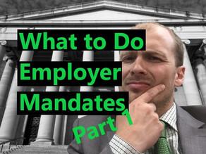 Preparing for Employer Mandates (Part 1)