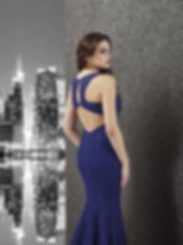 cenker gown.jpg