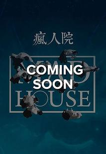 5695_mad_house_en1.jpg