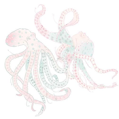 Octopus Pattern Design by Petunia.