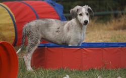 He has always been a water dog!