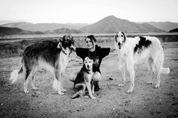 Danielle with Gianni, Spencer, and silken windhound Bella while living in California