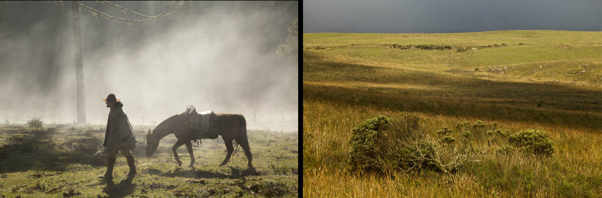 Pampas e a Tropeirada Farroupilha