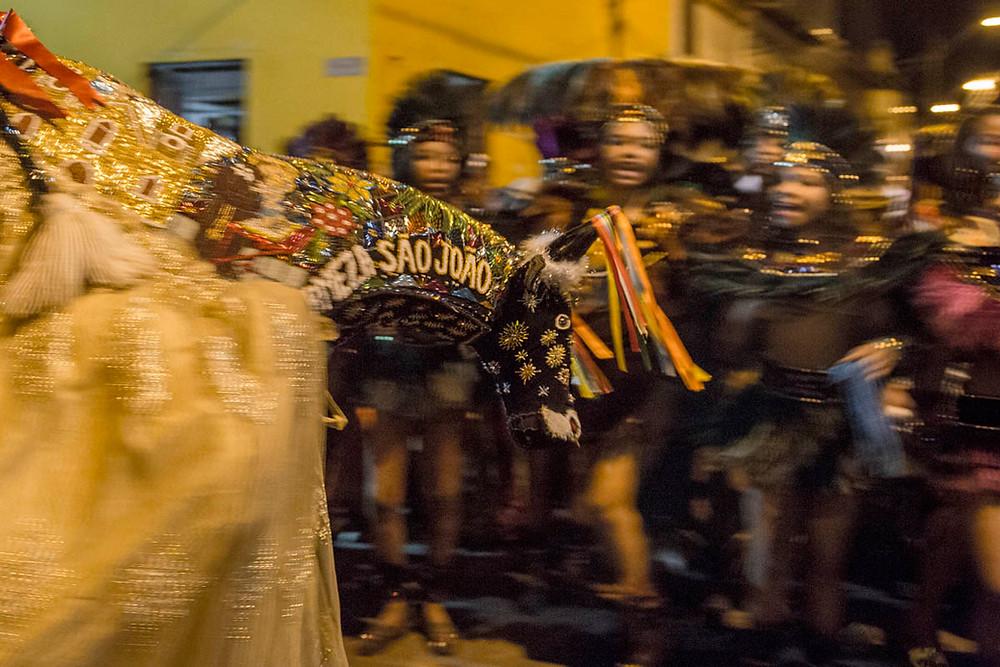 Boi de São João - Bumba meu Boi - São Luiz - Maranhão