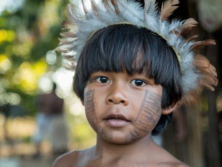 A festa da batata dos índios Krahô: a importância do equilíbrio das forças da natureza