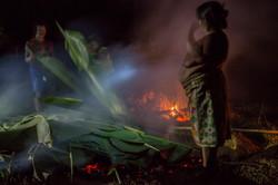 Festa da Batata índios Krahô