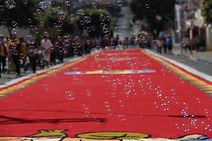 Festa Corpus Christi - Matão - Santana de Panaíba - quadros para decoração