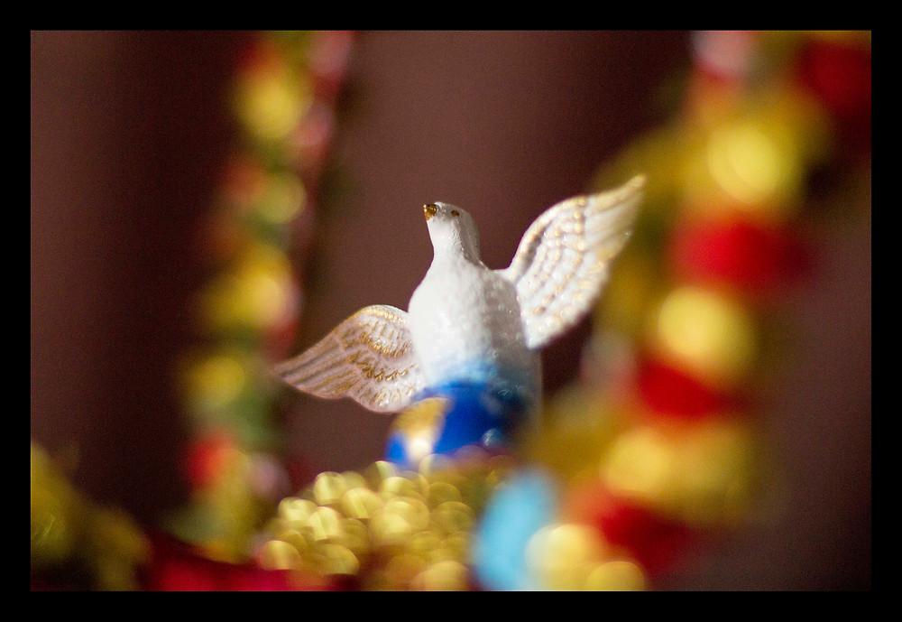 Pomba do Divino Espírito Santo em São Luiz do Paraitinga