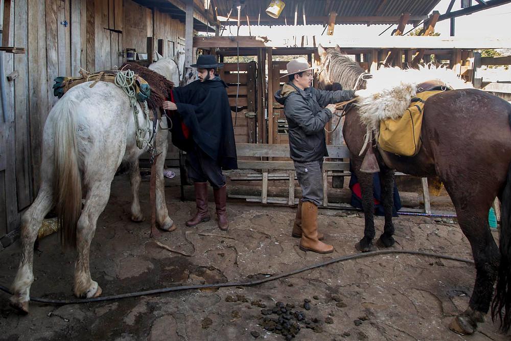 Tropeiros selam seus cavalos e se preparam para mais um dia de cavalgada