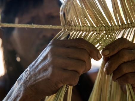 Curiosidades sobre o Dia do Índio