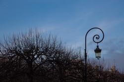 Paris fotografias para decoração