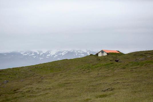 casa coberta de turfa