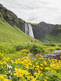 Seljalandsfoss e outra cachoeirinha