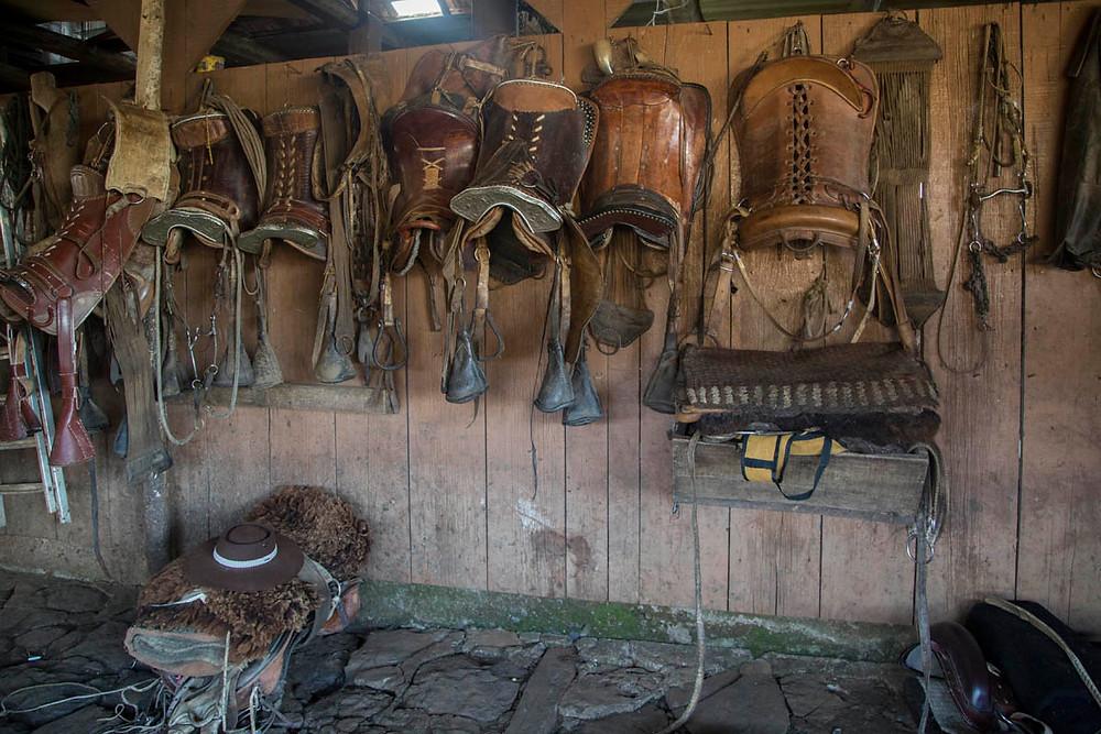 As selas são penduradas à noite, enquanto os cavalos e os tropeiros descansam