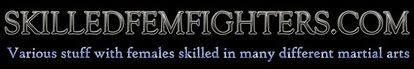 skilledfemfighters-banner.jpg