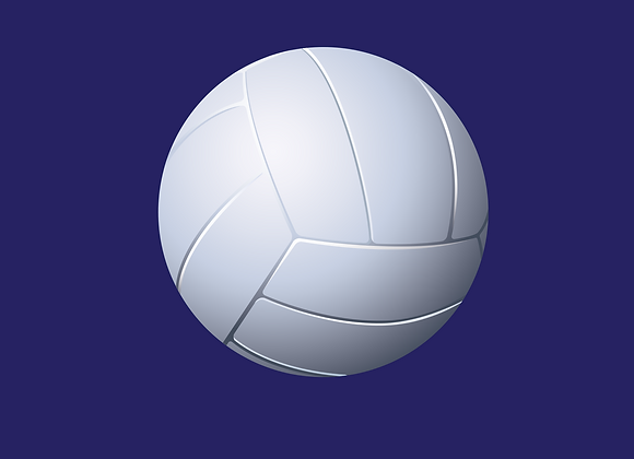Balon volleyball