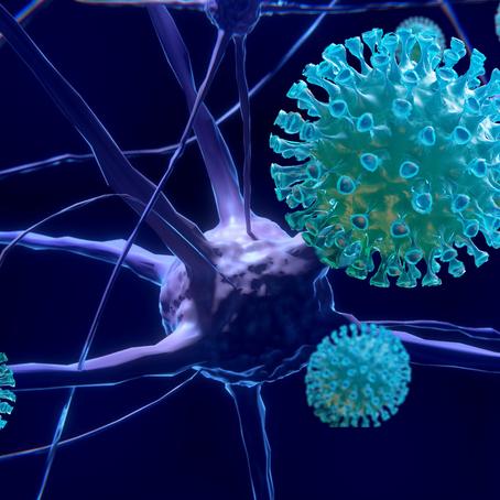 O cérebro e a COVID-19