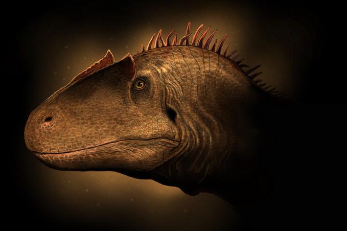 Allosaurus fragills