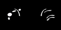 logo-chat3x500-300x147.png