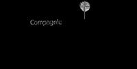 logo-sputnik.png