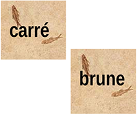 logo-carre-brune.png