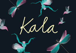 Intro Kala Website