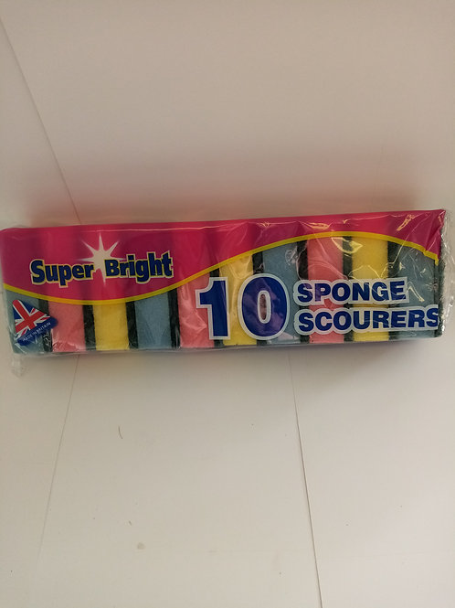 Pack of 10 scourers