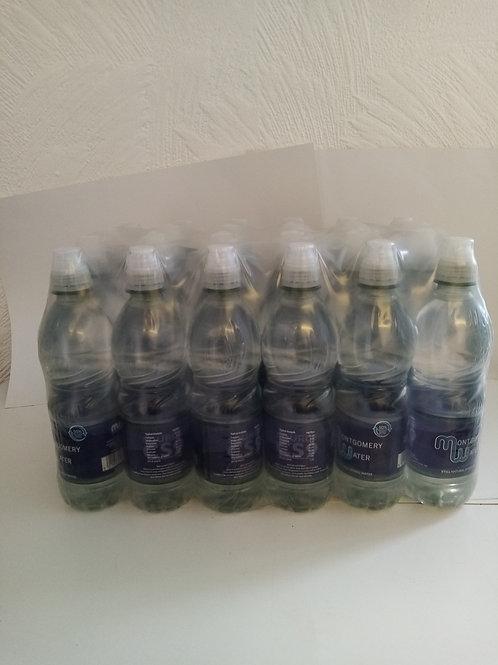 Montgomery water