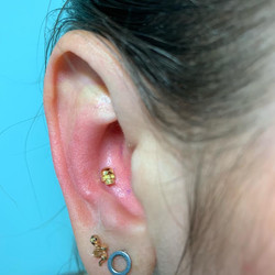 conch with solid 18kt skull danila tarci
