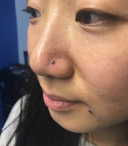 nostril with a disc