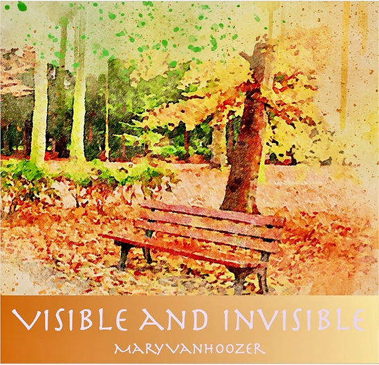 Visible and Invisible_album cover 1.jpeg