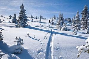vail winter.jpg