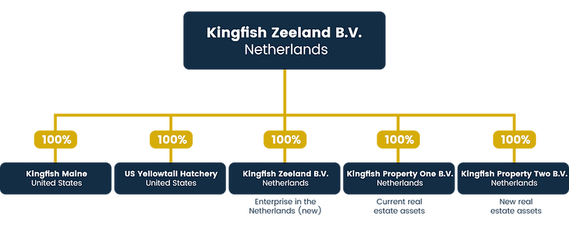 KFZ_Group-Structure2.png