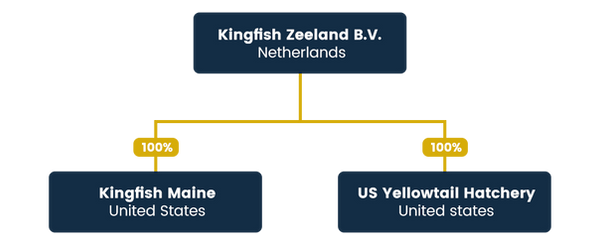KFZ_Group-Structure1.png